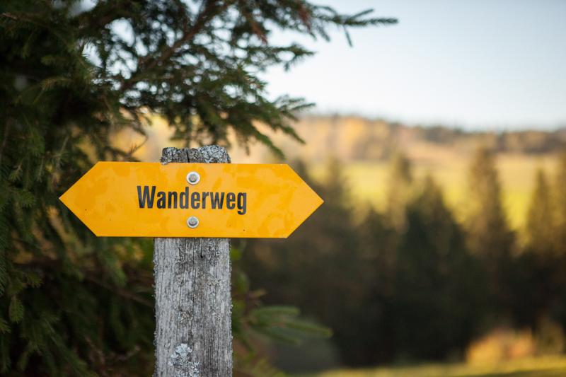 KRISTINREINHARD-hikingsign-1