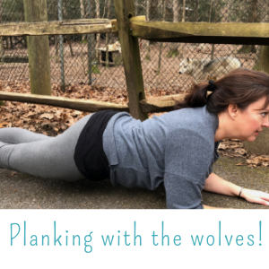 Planking with the wolves!