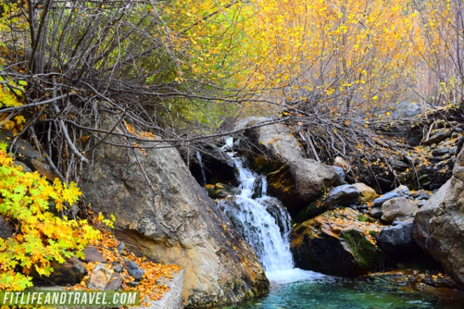 Photo 7 Big Cottonwood Canyon_WEB
